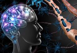 D vitamini eksikliği MS hastalığını kötüleştiriyor mu