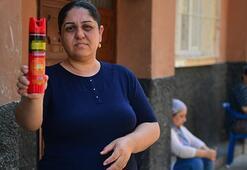 Adanalılar isyan etti Sinekten yatamıyoruz