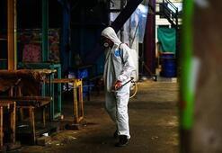 Meksikada corona virüsten 24 saatte 447 kişi hayatını kaybetti