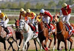 At Yarışları ne zaman başlayacak Haziran ayında at yarışları başlayacak mı