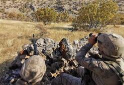 Mardinde PKK ve işbirlikçilerine şafak operasyonu