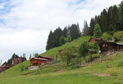 Ayder Yaylasında turizm sezonu, tulumla açıldı