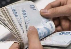 10 bin TL temel ihtiyaç desteği kredi başvurusu sonuç sorgulama sayfası Ziraat Bankası, Halkbank ve Vakıfbank kredi sonuçları...