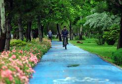 Dünyada bisiklet yolu en uzun ikinci şehir Konya