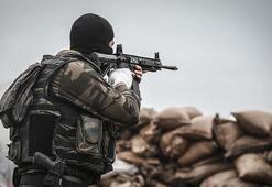 Son dakika Mardinde 2 terörist etkisiz hale getirildi