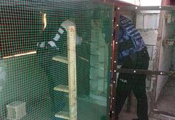 Gaziantepte, torbacı operasyonu: 16 gözaltı