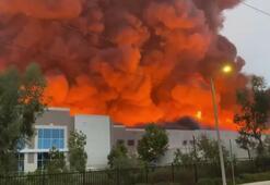 ABD'de Amazon şirketine ait depoda yangın