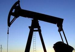Libyadaki en büyük petrol sahası Şerarada üretim yeniden başladı