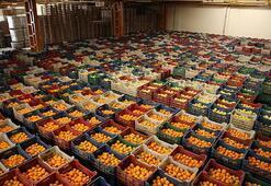 Doğu Akdenizden yaş sebze meyve ihracatına büyük katkı