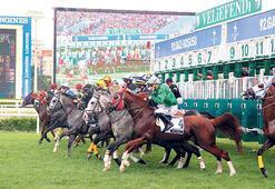 At yarışları geri dönüyor Seyircisiz koşulacak