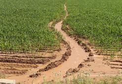 Vali Şahinden vahşi sulama yöntemine tepki: Su bedava gelmiyor