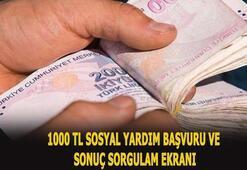 1000 TL sosyal yardım başvurusu sorgulama sayfası Sosyal yardım parası başvurusu nasıl yapılır