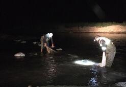 Vanda ağlara takılı 6 ton inci kefali ele geçirildi