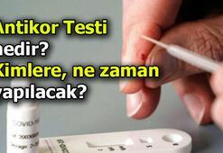 Antikor testi nedir Antikor testi ne zaman, kimlere yapılacak