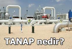 TANAP nedir TANAP açılımı ve proje güzergahı nerede