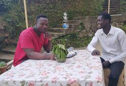 Senegalli işçiler, çay toplamayı internetten öğrenmiş