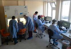İşte Türkiyenin ilk Covid-19 Laboratuvarı Günde 4 bin test yapılıyor