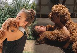Bensu Soralın köpek sevgisi