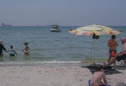 Caddebostan ve Menekşe plajlarında yosunlar kirlilik sinyali