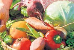 'Sağlıklı gıda haktır'