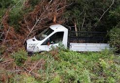 Kamyonet ormanlık alana düştü: 3 yaralı
