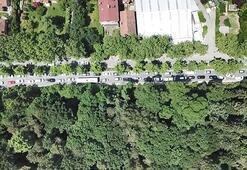 Son dakika... Belgrad Ormanına akın ettiler