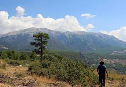 Likyanın 2200 yıllık sınır davasındaki ünlü dağ bulundu