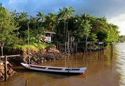 Corona virüs salgını Amazonları da etkiledi