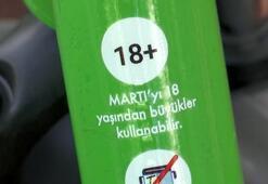 İstanbulda Martıların tehlikeli yolculuğu