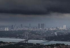 Son dakika... İstanbulda yeni kabus: Sivrisinek 3 ilçede arttı