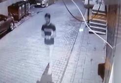 Üsküdarda kimliği belirlenemeyen bir şahış Kuran-ı Kerimi yırtarak çöpe attı