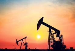 Petrol aramada  ruhsatlar uzatıldı