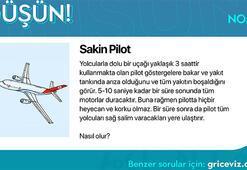 Günün bulmacası: Sakin pilot