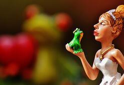 Kurbağa Prens masalı ve hikayesini oku… Okurken de eğlen