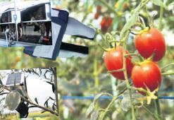 Robotla hasat sele erken uyarı