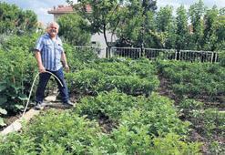 Yağmur suyuyla tarım