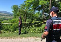 Evinin önündeki ağacı budadılar iki kişiyi öldürdü