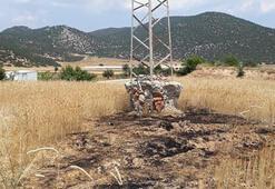 Antalyada yanarak elektrik direğinden yere düşen kargalar, tarlayı tutuşturdu