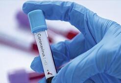 ABD-Meksika sınırındaki göçmen kampında ilk corona virüs vakası görüldü