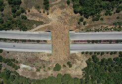 Ve tamamlandı Ekolojik köprü...
