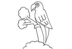 Papağan boyama sayfası