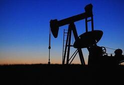 ABDnin petrol sondaj kulesi sayısı 16 haftadır azalıyor