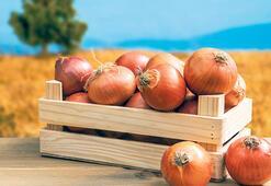 Soğanda fiyat istikrarı  için depo yatırımı