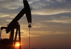 Petrolün varili 43,19 dolar
