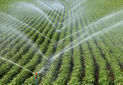 Çatlamış topraklar suya kavuşunca üretim de çiftçinin morali de arttı