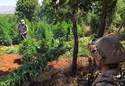 PKK, Doğu ve Güneydoğuda vatandaşları uyuşturucuüretimine teşvik etmiş
