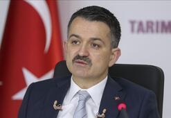 Tarım ve Orman Bakanı Pakdemirliden tağşiş ve taklit açıklaması
