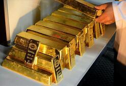 Türkiyenin altın ithalatı arttı
