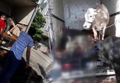 İstanbulda tüyler ürperten olay 4ü öldü, 2sini kesti