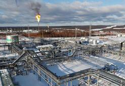 Rusyanın petrol geliri azaldı